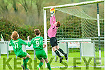 Kerry U/16 Soccer : Kerry's Alex O'Coonor makes  great save  despite the nearness of Limerick's Paul Walsh & Mark Hayes.
