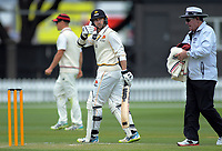 Devon Conway gives the thumbs-up to teammates after beating Michael Papps' record of 316 runs during day two of the Plunket Shield cricket match between the Wellington Firebirds and Canterbury at Basin Reserve in Wellington, New Zealand on Wednesday, 30 October 2019. Photo: Dave Lintott / lintottphoto.co.nz