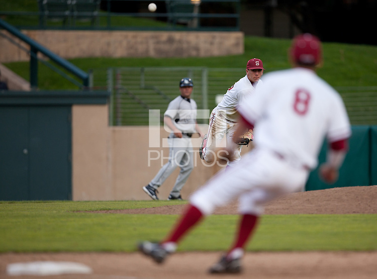 STANFORD, CA - March 25, 2011: Stephen Piscotty of Stanford baseball throws to first after fielding a bunt during Stanford's game against Long Beach State at Sunken Diamond. Stanford lost 6-3.