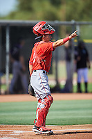 Los Angeles Angels of Anaheim Keinner Pina (8) during an Instructional League game against the Colorado Rockies on October 6, 2016 at the Tempe Diablo Stadium Complex in Tempe, Arizona.  (Mike Janes/Four Seam Images)