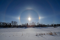 Sundogs and halos in Winnipeg's Southdale neighbourhood<br />