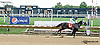 My Crazy Dayse winning at Delaware Park on 7/24/14