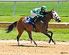 I am Superior Too winning at Delaware Park on 6/3/2017