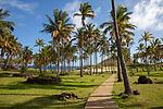 Anakena Beach & Ahu Nau Nau