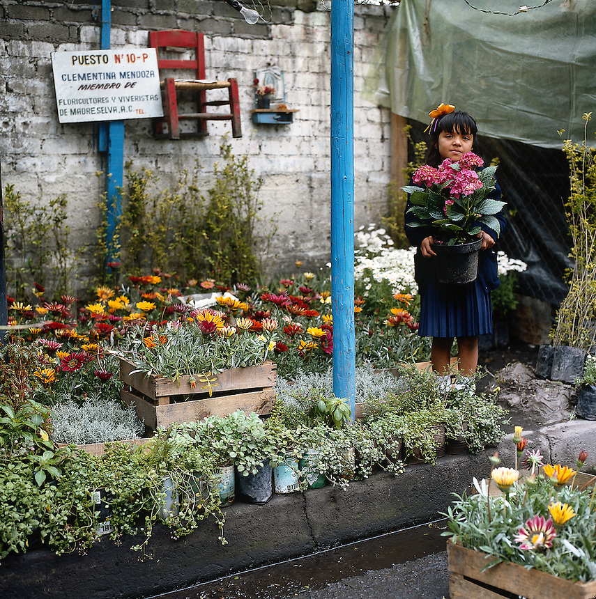 Flower vendor in Mexico City, Mexico--series - young girl holding flowering plant at flower market. Mexico City Distrito Federal, Mexico.