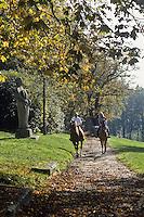 Europe/France/Limousin/87/Haute Vienne:Randonnée équestre à l'Ile de  Vassivière,  dans le Parc Naturel Régional de Millevaches en Limousin