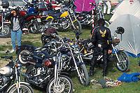 "- gathering of ""bikers"" motorcyclists....- raduno di motociclisti ""bikers"""