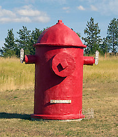 Fire hydrant outhouse at Dog Bark Park