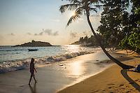 Mirissa, woman walking on Mirissa Beach at sunset, South Coast of Sri Lanka, Southern Province, Asia. This is a photo of a woman walking on Mirissa Beach at sunset, Sri Lanka, Asia.