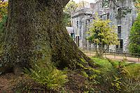 Armadale Castle, Scotland