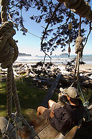 Hiker relaxing in driftwood swing at beach camp, Coastal Strip, Olympic National Park, WA.