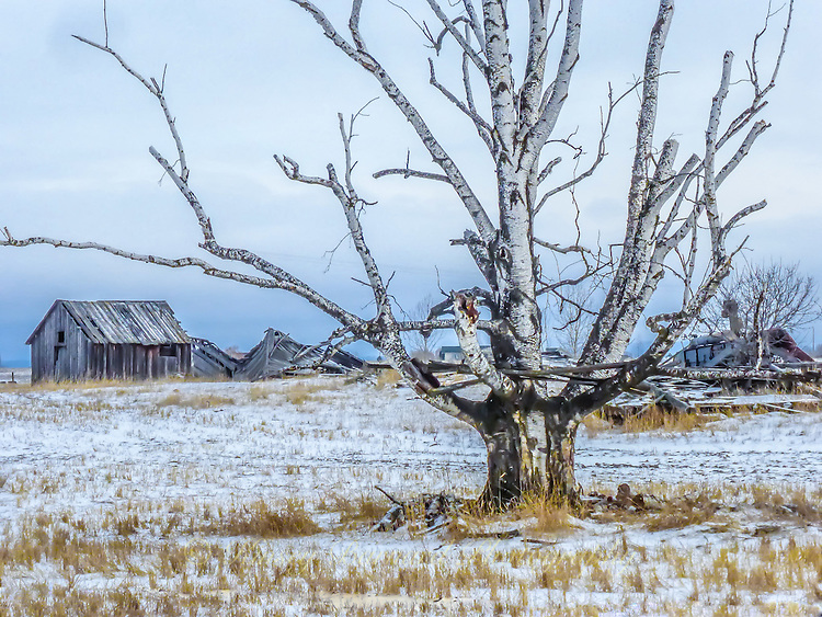 Winter landscape in rural Montana