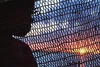 Silhouette with fishing net, Aurukun, Cape York Peninsula.