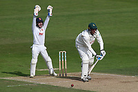 Adam Wheater of Essex appeals successfully for the wicket of Luke Fletcher from the bowling of Simon Harmer during Nottinghamshire CCC vs Essex CCC, Specsavers County Championship Division 1 Cricket at Trent Bridge on 12th September 2018