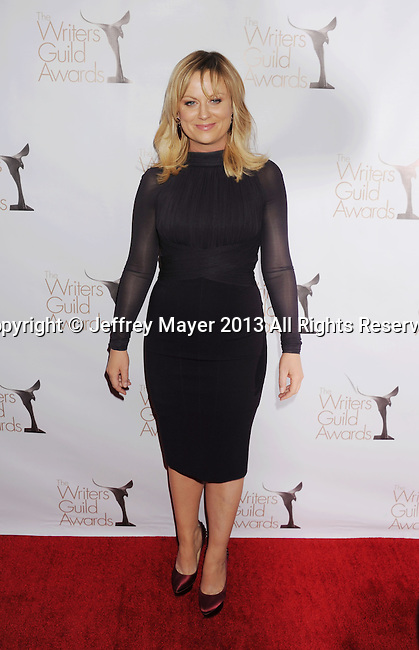 LOS ANGELES, CA - FEBRUARY 17: Amy Poehler arrives at the 2013 Writers Guild Awards at JW Marriott Los Angeles at L.A. LIVE on February 17, 2013 in Los Angeles, California.