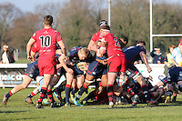 London Scottish push towards the line during the Greene King IPA Championship match between London Scottish Football Club and Jersey at Richmond Athletic Ground, Richmond, United Kingdom on 18 February 2017. Photo by David Horn / PRiME Media Images.