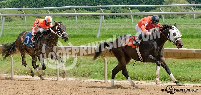 Forest Man winning at Delaware Park on 8/21/13