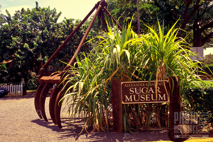 An old piece of agricultural machinery is flanked with sugar cane at the Alexander and Baldwin Sugar Museum in Puunene on Maui.
