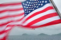 American flag with Venevualan laughing gull. Virgin Islands