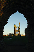 The historic remains of St Andrews Cathedral, St Andrews, Fife. St Andrews is the Patron Saint of Scotland<br /> <br /> Copyright www.scottishhorizons.co.uk/Keith Fergus 2011 All Rights Reserved
