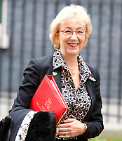 LONDON, UNITED KINGDOM - NOVEMBER 06: Lord President of the Council and Leader of the House of Commons Andrea Leadsom leaves after a Cabinet meeting at 10 Downing Street in central London. November 06, 2018 in London, England. <br /> CAP/GOL<br /> &copy;GOL/Capital Pictures