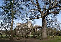 Malahide Castle has extensive grounds to explore.