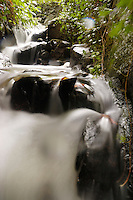 Water tumbling over rocks on Vancouver Island, Canada