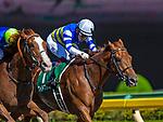 FUCHU,JAPAN-JUN 16: Wide Pharaoh #1, ridden by Yuichi Fukunaga,wins the Unicorn Stakes at Tokyo Racecourse on June 16,2019 in Fuchu,Tokyo,Japan. Kaz Ishida/Eclipse Sportswire/CSM