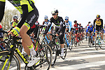 The peloton including Mark Renshaw (AUS) Team Dimension Data pass through Mater during the 60th edition of the Record Bank E3 Harelbeke 2017, Flanders, Belgium. 24th March 2017.<br /> Picture: Eoin Clarke | Cyclefile<br /> <br /> <br /> All photos usage must carry mandatory copyright credit (&copy; Cyclefile | Eoin Clarke)