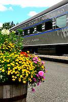 Adirondack Train