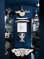 A pair of display cases filled with artefacts flanks a hippo skull and a section of whale's backbone