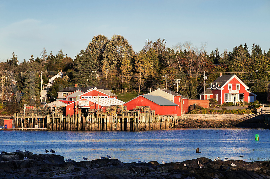 Lobster pier and market, Bass Harbor, Maine, USA