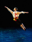 English National Ballet. Emerging Dancer competition 2013. Queen Elizabeth Hall. Nathan Young.