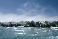 Mendocino Village with summer fog, Coastal Northern California. 100 mg tango scan from 35mm film. © John Birchard