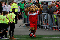 Rochester, NY - Saturday May 21, 2016: The Western New York Flash mascot Striker. The Western New York Flash defeated Sky Blue FC 5-2 during a regular season National Women's Soccer League (NWSL) match at Sahlen's Stadium.