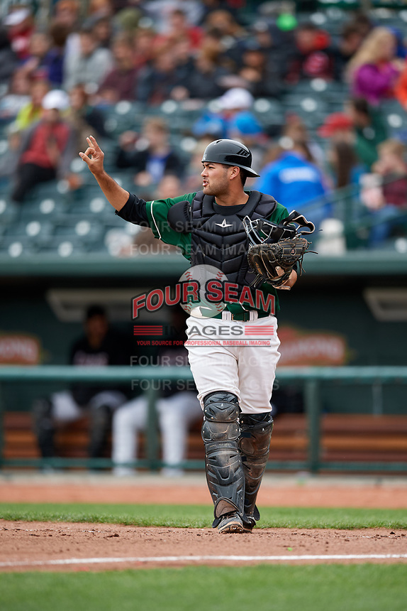 Great Lakes Loons catcher Steve Berman (28) signals to the defense during a game against the Burlington Bees on May 4, 2017 at Dow Diamond in Midland, Michigan.  Great Lakes defeated Burlington 2-1.  (Mike Janes/Four Seam Images)