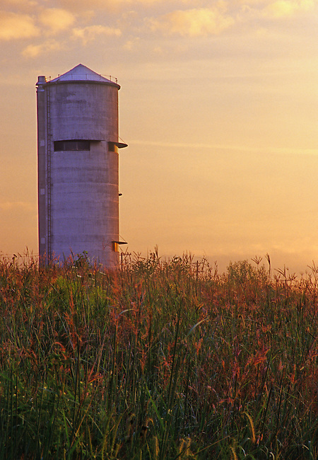 Grasses Grow in Profusion in the Restored Prairie at Geneva Park District's Peck Farm Park in Kane County, Illinois, as the sun sets behind the revamped Silo Observation Tower.
