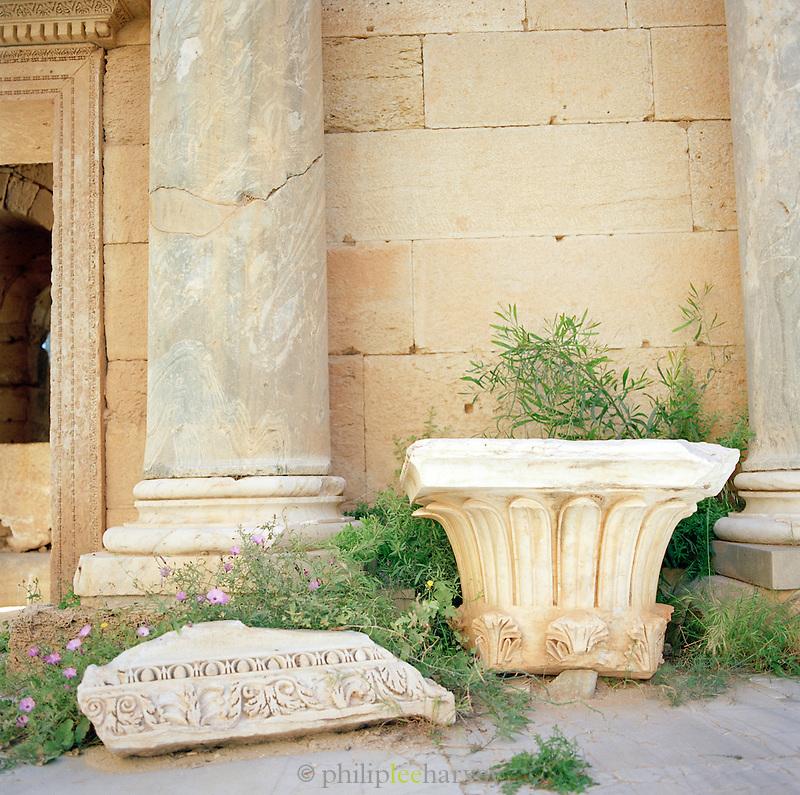 Detail of fallen carved stonework, Leptis Magna, Libya