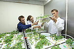 0711-34 673.CR2.College of Life Sciences.Plant and Wildlife Sciences.Dr. Bryan Hopkins Lab..November 12, 2007..Photography by Mark A. Philbrick..Copyright BYU Photo 2007.All Rights Reserved .photo@byu.edu  (801)422-7322