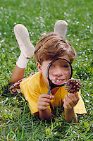 CAUCASIAN BOY EXAMINING PINECONE WITH A MAGNIFYING GLASS. BOY USING MAGNIFYING GLASS. SAN FRANCISCO CALIFORNIA USA.