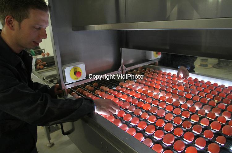 Foto: VidiPhoto..BARNEVELD - Bij pluimveehouder Gerard Brandsen worden dinsdag de eerste eieren verwerkt uit het zogenoemde Rondeel, een innovatieve en unieke kippenstal. In het Rondeel zijn vijf groepen van 6000 leghennen ondergebracht met vijf overdekte dag- en nachtverblijven in een taartpuntvorm en een eigen klimaatsysteem. De nieuwe futuristische kippenschuur heeft het hoogste keurmerk voor diervriendelijk ondernemen. De kwalitatief hoogwaardige eieren worden voorlopig afgezet in de regio. Vanaf juli gaan ze naar de supermarkten.