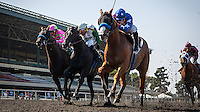 July 4th, 2012. Blueskiesnrainbows and jockey Joe Talamo win the Swaps Stakes (GII) at Betfair Hollywood Park, Inglewood, CA.