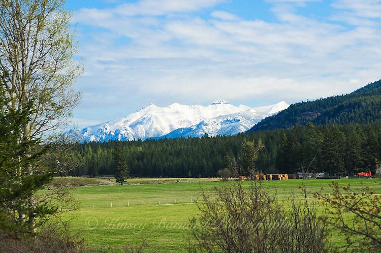 Kootenay Rockies as backdrop to hay ranch