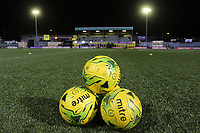 General view of Coles Park before Kick off during Haringey Borough vs AFC Wimbledon, Emirates FA Cup Football at Coles Park Stadium on 9th November 2018