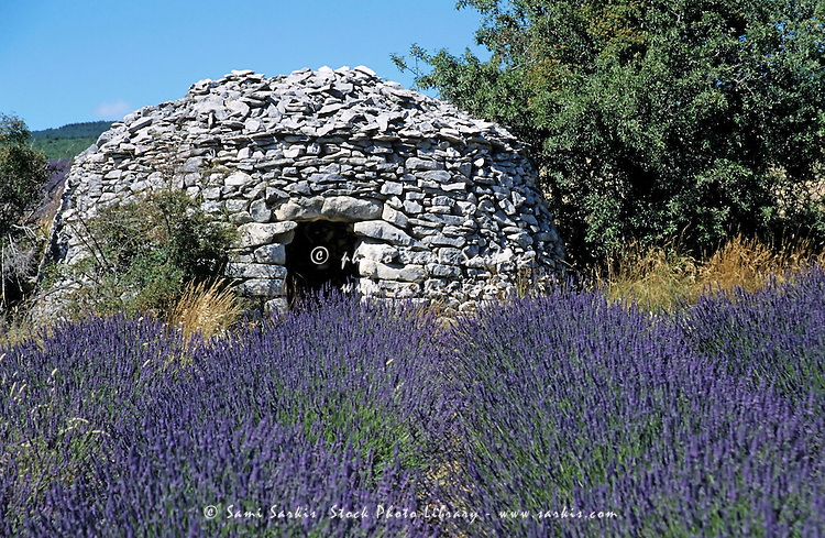 Typical traditional stone structure in a lavender field.