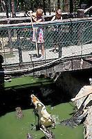 Two children (10 years old, 7 years old) feeding captive crocodiles. Binh Chau hot springs, Vietnam