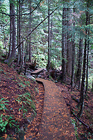 Lake Serene Trail, Mt. Baker-Snoqualmie National Forest, Washington, US