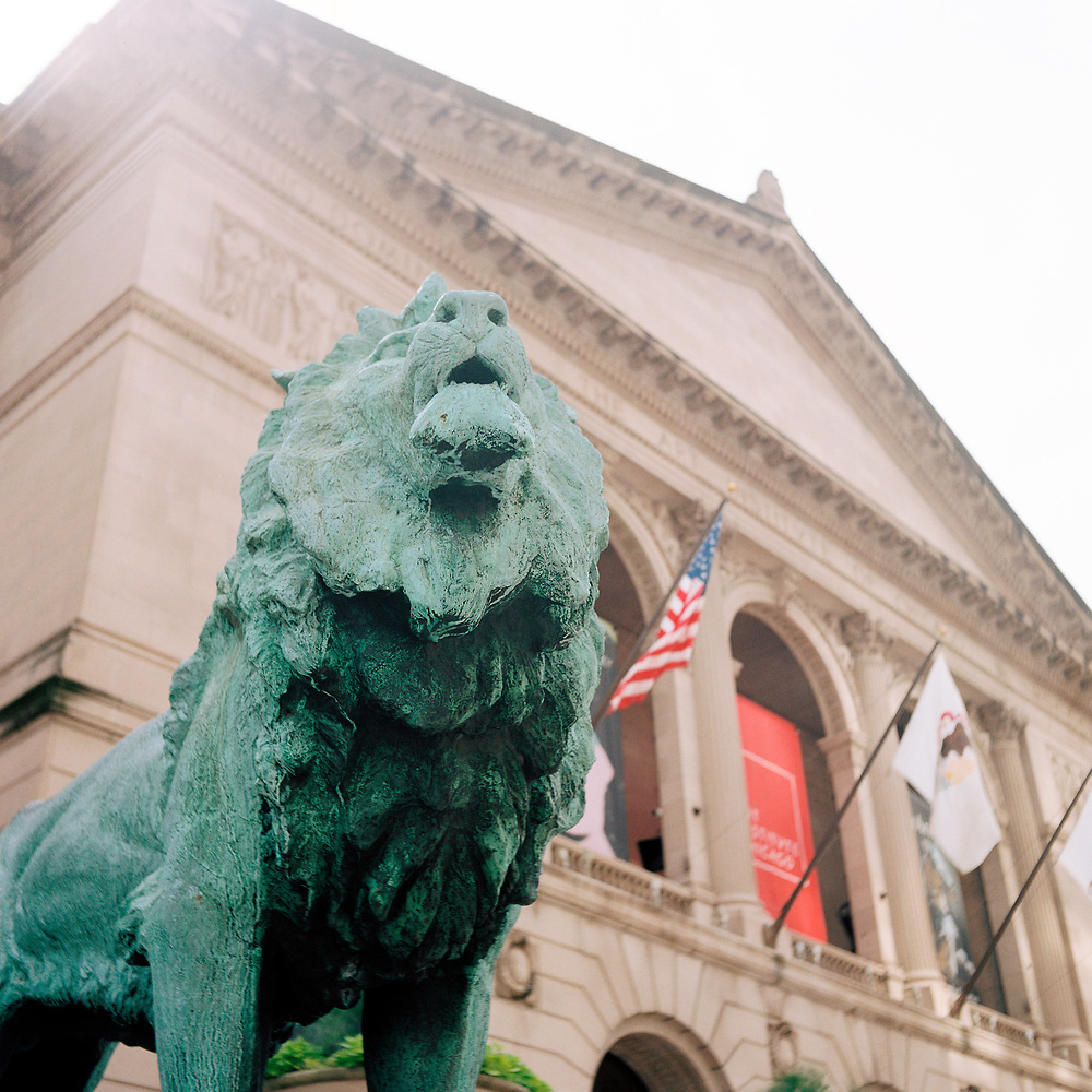 A sculpture of a lion by Edward Kemeys guards the entrance to the Art Institute of Chicago on Sunday, July 1, 2018. (Photo by James Brosher)