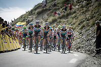 Team AG2R-La Mondiale pacing the first grupetto up the Tourmalet (HC/2115m/19km @7.4%)<br /> <br /> Stage 14: Tarbes to Tourmalet (117km)<br /> 106th Tour de France 2019 (2.UWT)<br /> <br /> ©kramon