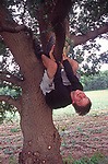 A1X0T7 Teenage boy hanging out of a tree